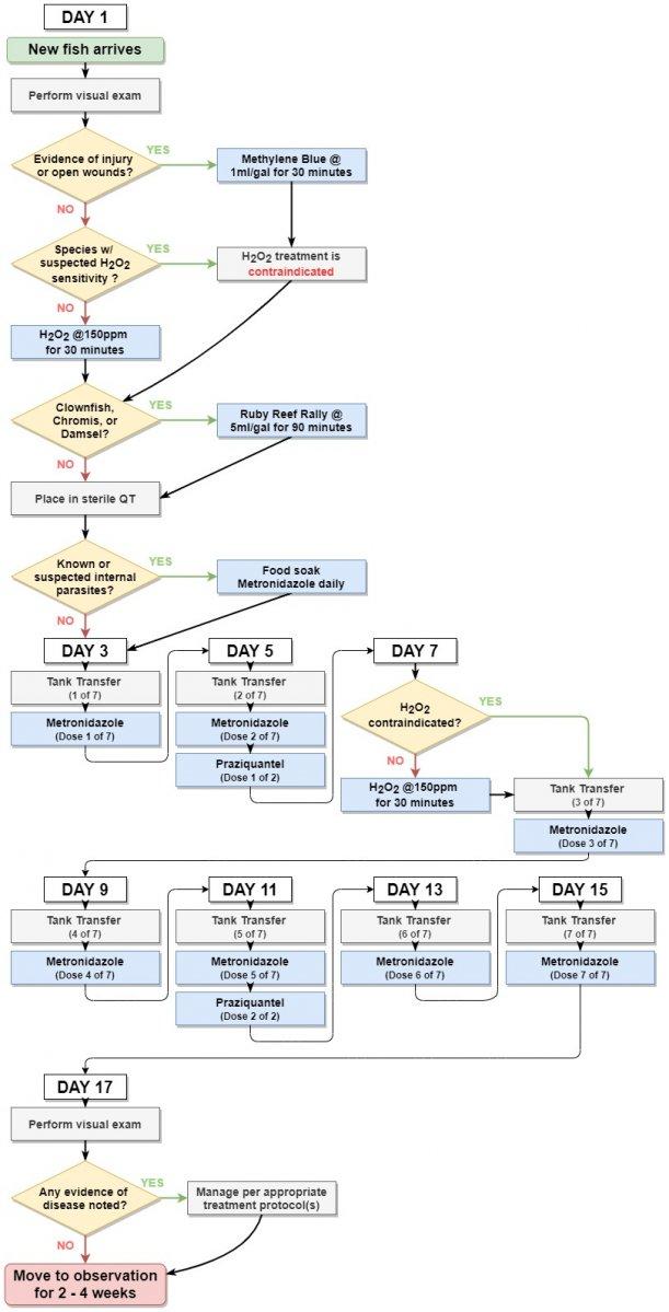 QT Workflow.jpg
